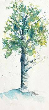 Aspen Tree w Snow watercolor by CheyAnne Sexton