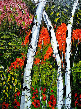 Aspen Tree's during Autumn 4 by Portland Art Creations