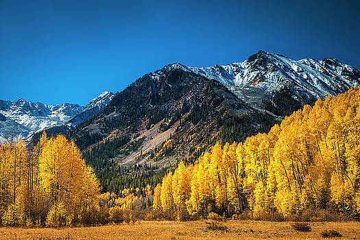 Aspen Wilderness by Andrew Soundarajan