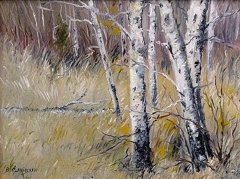 Aspens by Boris Garibyan