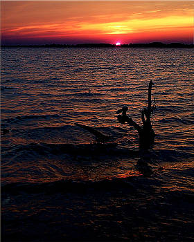 Assateague Bay Sunset by Michael Shreves