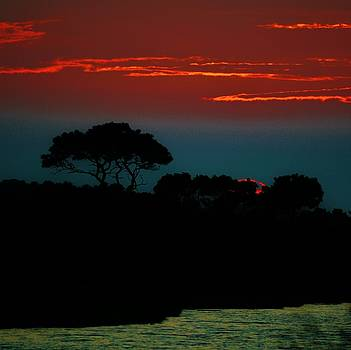 Assateague Dusk by William Bartholomew