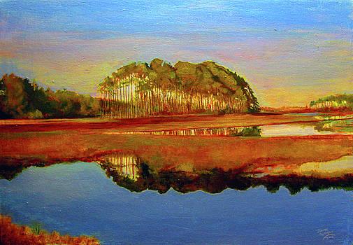 Assateague Evening by James Gallagher