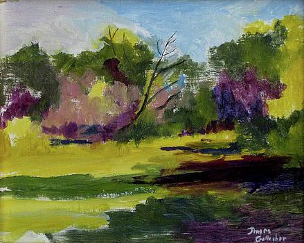 Assateague Landscape Study by James Gallagher