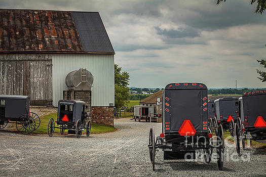 Assorted Amish Buggies at Barn by George Sheldon