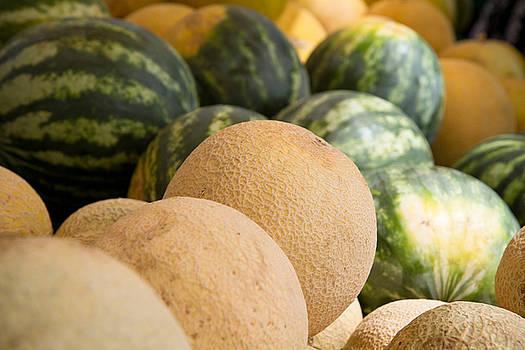 Assortment Of Melons by Dina Calvarese