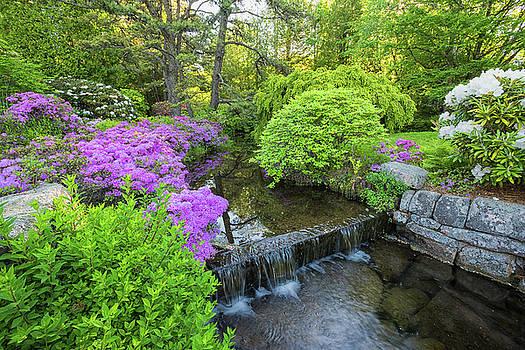 Asticou Garden Delight by Dennis Kowalewski