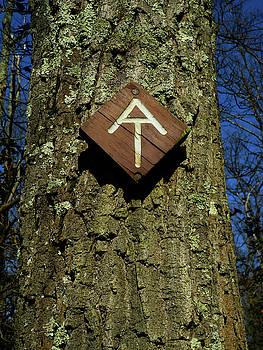 AT Maryland Sign by Raymond Salani III
