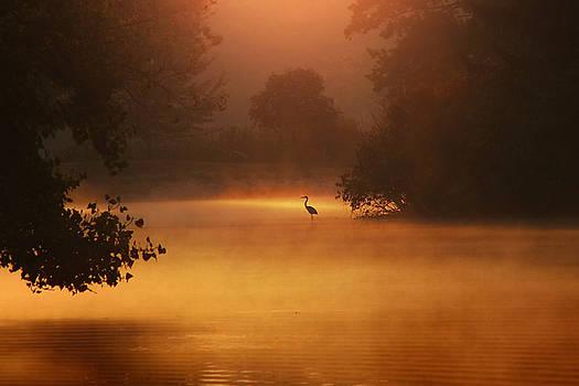 At Peace by Rob Blair
