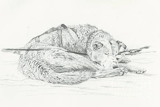 At Rest by Sarah Bevard