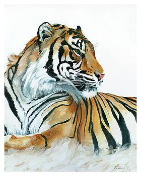 At Rest, Tiger by Sarah Soward