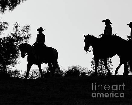 At Sunset on the Ranch by Ana V Ramirez