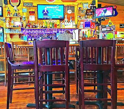 At the Bar by Susan Leggett