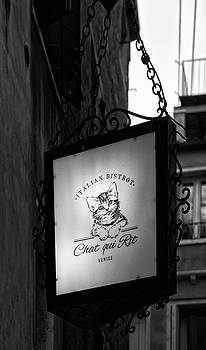 At the Chat Qui Rit Bistro  by John Hoey