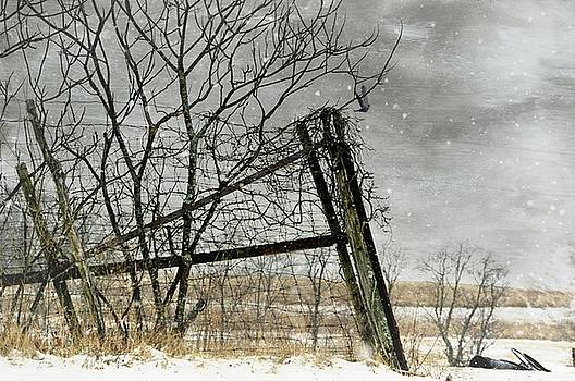 At The End...Fence Post by Stephanie Calhoun