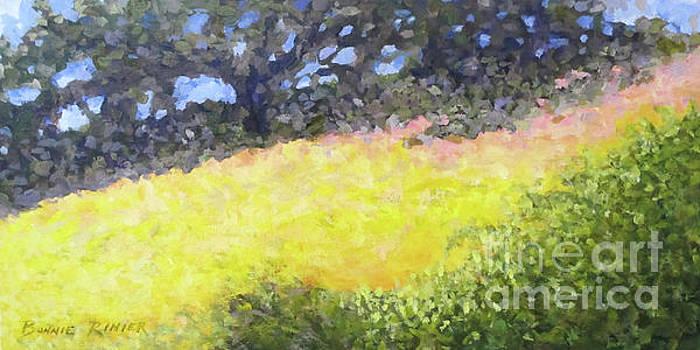 At the Plateau by Bonnie Rinier