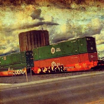 At The Train Crossing. Arizona  by Speedy Birdman