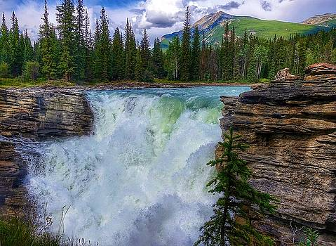 Athabasca Falls, AB  by Heather Vopni