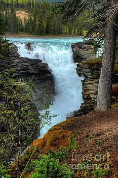Wayne Moran - Athabasca Falls Jasper National Park