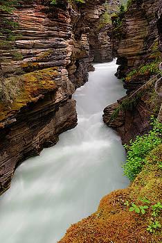 Athabasca Falls  by Tod Colbert