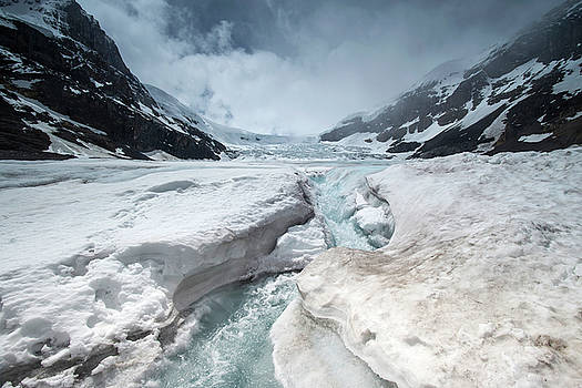 Athabasca Glacier, Alberta, Canada by David Stanley