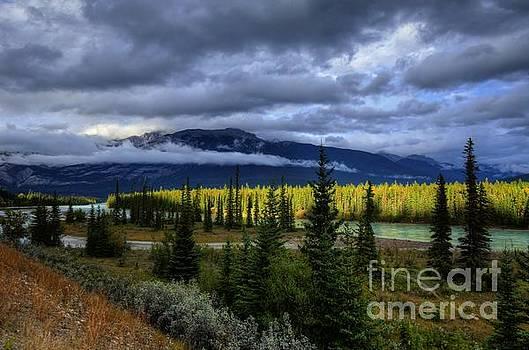 Wayne Moran - Athabasca River Basin Jasper National Park