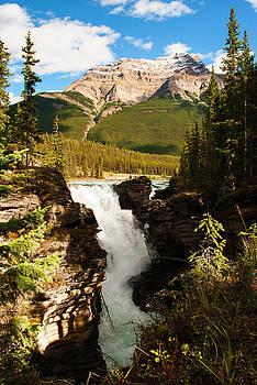 Athabasca waterfalls I by Yuri Santin