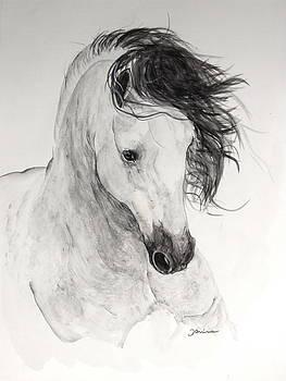 Atinado II by Janina  Suuronen
