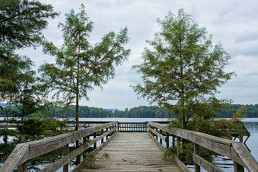 Atkins Lake Pier by Tammy Chesney