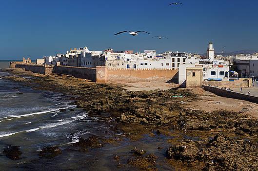 Reimar Gaertner - Atlantic coast and North bastion and ramparts of Essaouira Moroc