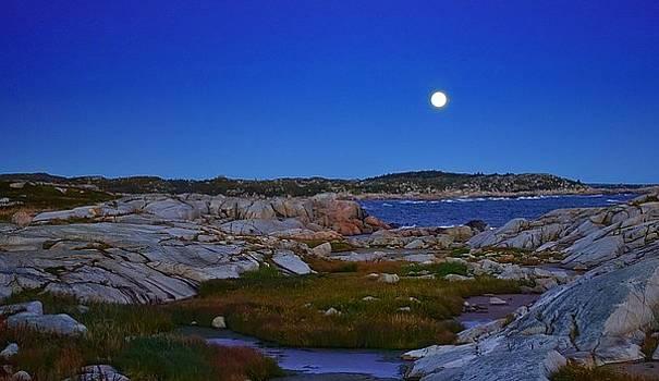 Atlantic Moon  by Heather Vopni