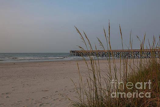 Dale Powell - Atlantic Ocean Morning Walk