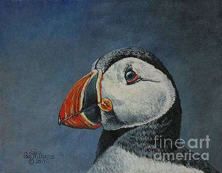 Atlantic Puffin by Bob Williams