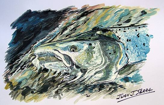 Atlantic Salmon 3 by Juan Jose Serra