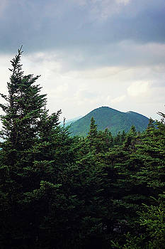 Atop Mt Mitchell 1 by Megan Swormstedt