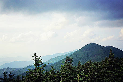 Atop Mt Mitchell 2 by Megan Swormstedt