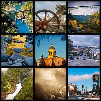 Auburn Collage by Sherri Meyer