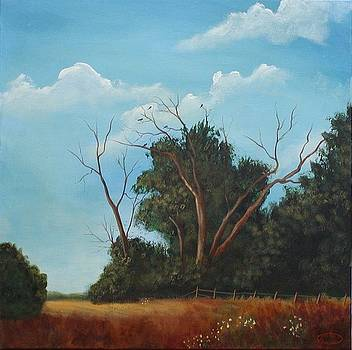 Audley Raod Meadow by Sharon Steinhaus