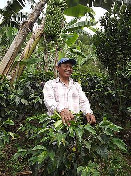 Ariel - Augustine on His Coffee Farm
