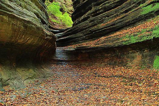 Aurora Canyon 1 by Greg Matchick