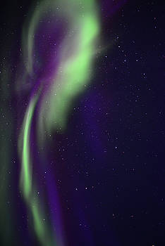 Auroral Light by Cadence Chinle