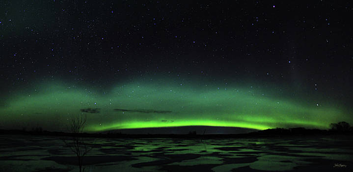 Aurora on Ice by Andrea Lawrence