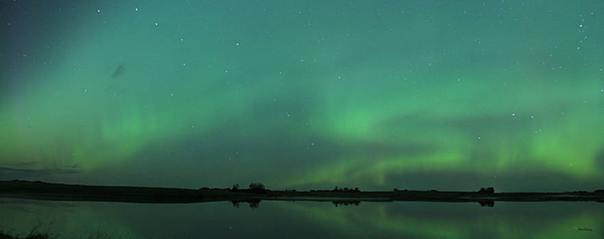 Aurora Over Water by Andrea Lawrence