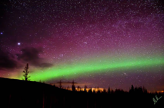 Aurora Star Sky by Steve  Milner