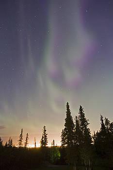 Tim Grams - Auroras over Anchorage