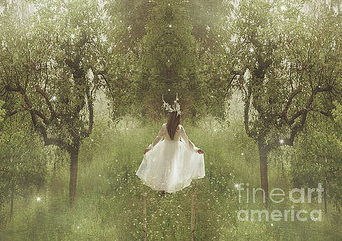 Aurore by Babette Van den Berg