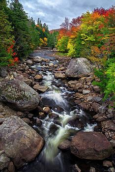 Ausable Autumn 2 by Mark Papke