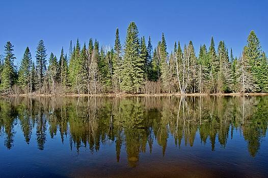 Ausable Reflections 1768 by Michael Peychich