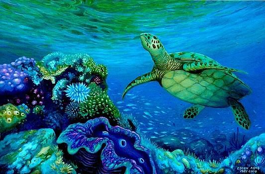 Auspicious Turtle  by Edoen Kang