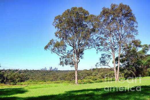 Aussie Gum Tree Landscape by Kaye Menner by Kaye Menner